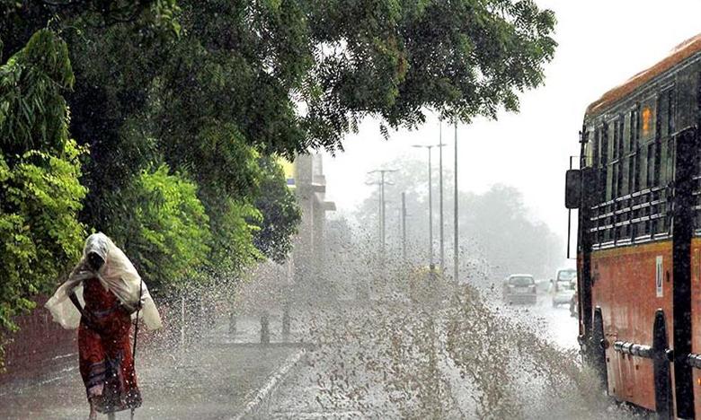 Monsoon 2019, తెలుగు రాష్ట్రాల్లో విస్తారంగా వర్షాలు..