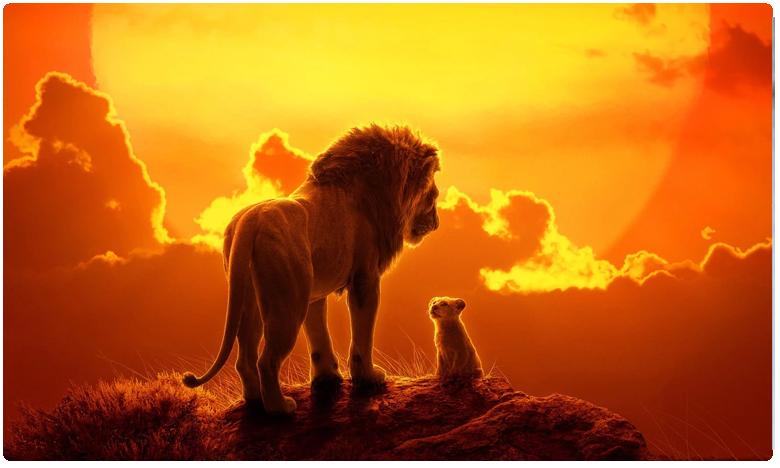 The Lion King, గర్జిస్తోన్న 'సింహం రాజు'.. వందకోట్లకు చేరువలో