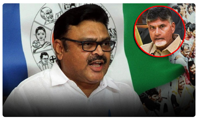 ycp leader Ambati Rambabu fire on Chandrababu