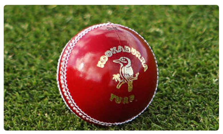 Microchipped cricket ball may soon help umpires in Big Bash League