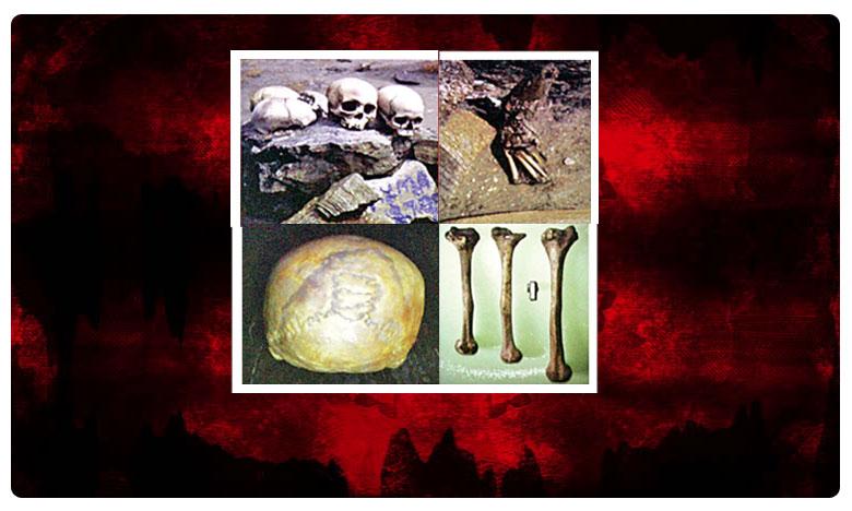 Skeltons Original Story