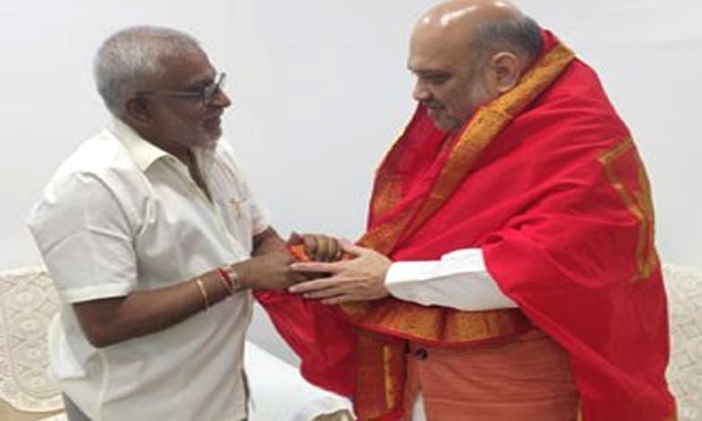 YV Subba reddy, అమిత్షాతో వైవీ సుబ్బారెడ్డి భేటీ!