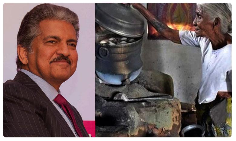 Mahindra Wants To Invest In Tamilnadu Idli Womans Business, ఇడ్లీ ఎఫెక్ట్: బామ్మను వెతుక్కుంటూ.. ఆనంద్..!