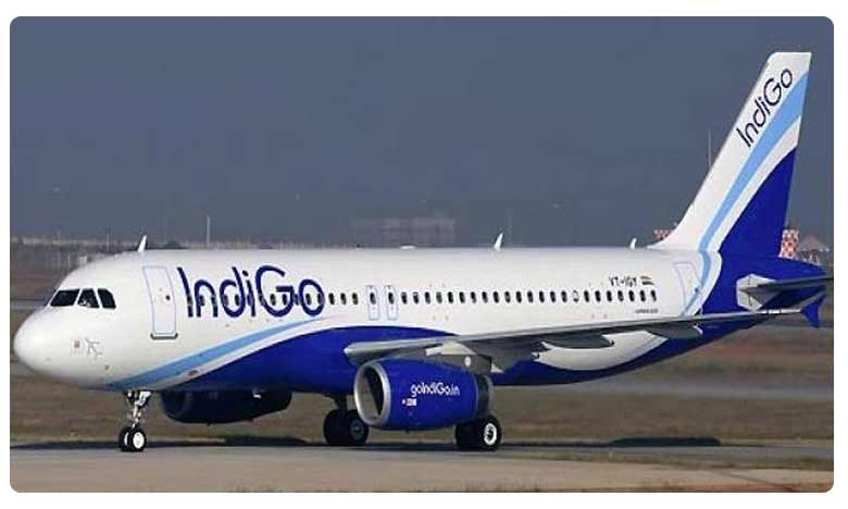 IndiGo passengers 'forced' to sit in stranded flight; DGCA to probe