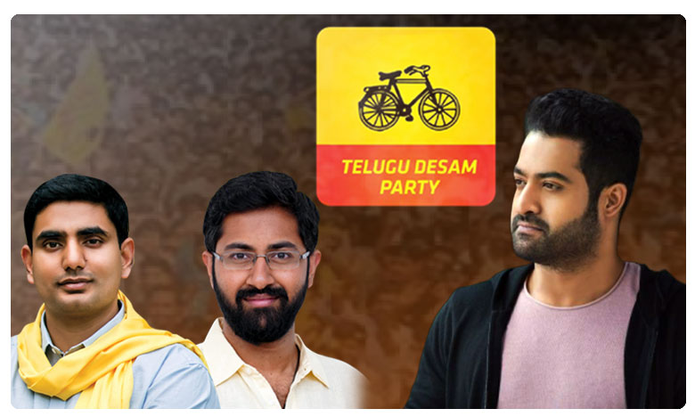 TDP Party