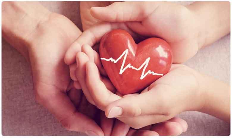 World Heart Day 2019, పాతికేళ్లకే గుండెకి తూట్లు .. నేడు వరల్డ్ హార్ట్ డే..