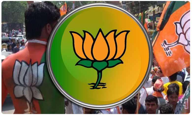 BJP To Announce Candidate for Huzurnagar bypoll soon, పొలిటికల్ మిర్చి: బీజేపీకి అభ్యర్ధుల కొరత..