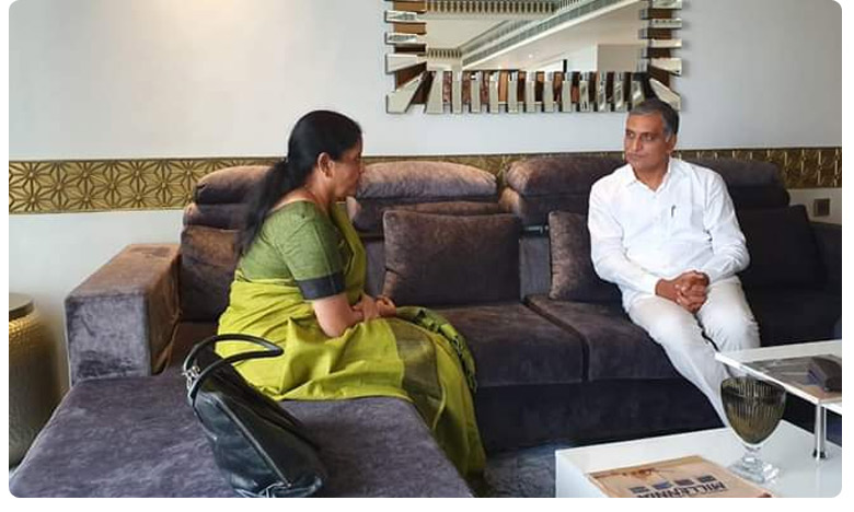 Telangana Minister Harishrao met with Union minister Nirmala sitaramana