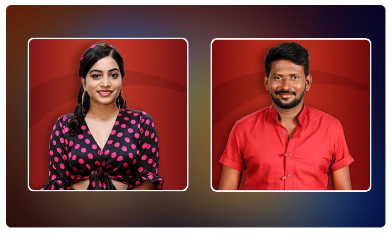 Bigg Boss 3 Telugu: Punarnavi and Mahesh Vitta to face elimination, బిగ్బాస్ 3: క్లారిటీ వచ్చేసింది.. వాళ్లిద్దరే ఔట్..?