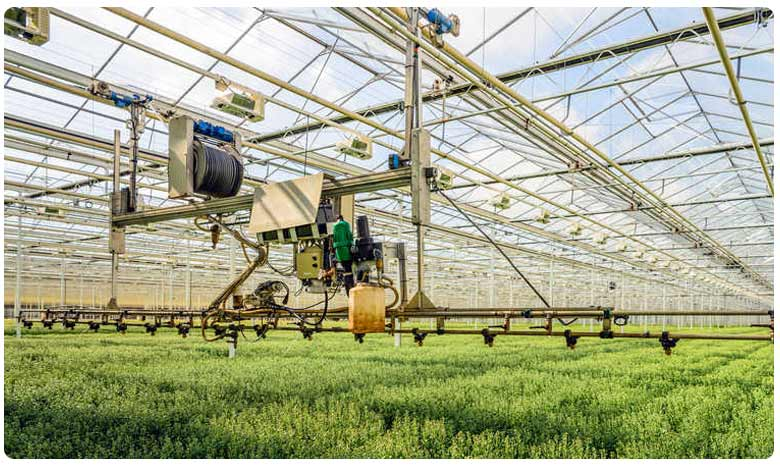 Smart Farming is key for the future of agriculture, స్మార్ట్ వ్యవసాయం: భూమి లేకుండానే పంటలు పండించొచ్చు!