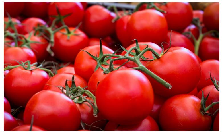 Tomato compound 'may boost male fertility', పురుషుల్లో సంతానోత్పత్తికి శక్తిని పెంచుతోన్న 'టమాట'!