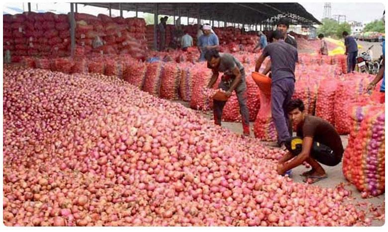 Export ban stock limit pull wholesale onion prices to under rs 30 per kg, ఉల్లి కొనుగోలు దారులకు గుడ్ న్యూస్.. అది ఏమిటంటే..?