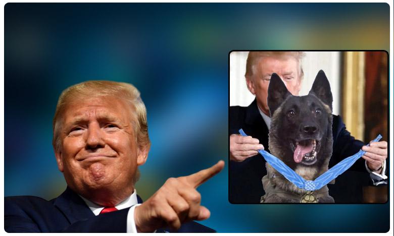 trump tweets doctored photo of him honouring dog who chased isis chief, బాగ్దాదీని ' చంపిన ' శునకాన్ని ట్రంప్ ' గౌరవించాడిలా ' !