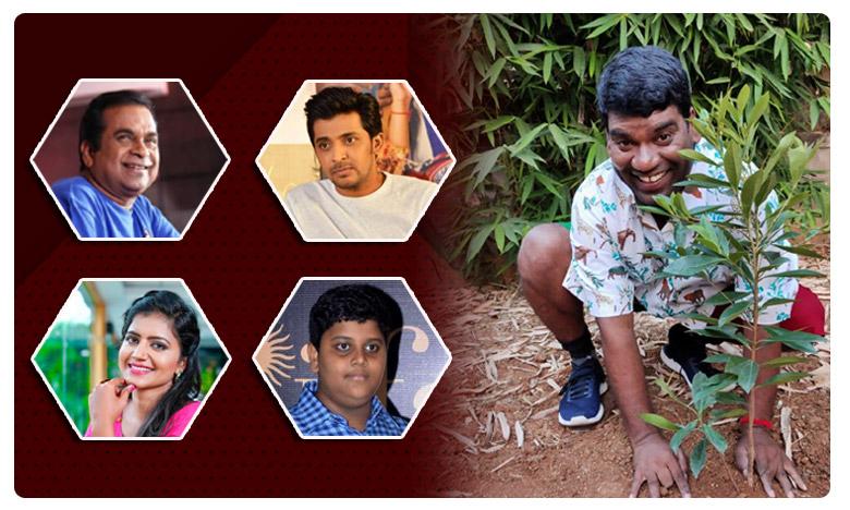 Green challenge : Ismart sathi Nominates Brahmanandam Shiva jyothi and Himanshu, ఆ నలుగురికి ఇస్మార్ట్ సత్తి.. గ్రీన్ ఛాలెంజ్ సవాల్