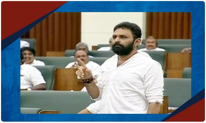 Andhra Pradesh Assembly Winter Session 2019, వ్యక్తిగా వచ్చి వ్యవస్థగా మారాడు జగన్..