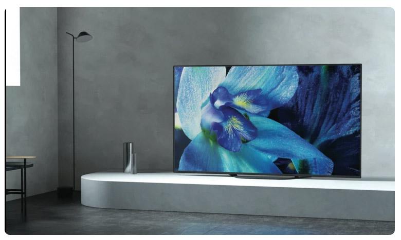 Sony Duplicate TV Sales, పేరు బ్రాండ్.. పీస్ లోకల్!