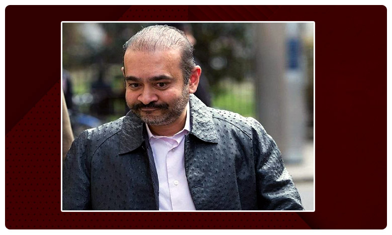 PNB fraud: PMLA court declares Nirav Modi, నీరవ్ మోదీ ఆర్ధిక నేరగాడు.. ముంబై కోర్టు