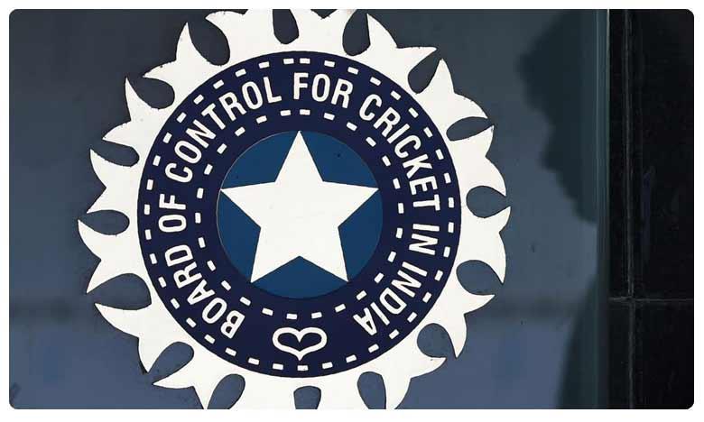 Delhi cricketer Prince Ram Niwas Yadav, ఫేక్ బర్త్ సర్టిఫికేట్.. క్రికెటర్పై బీసీసీఐ వేటు