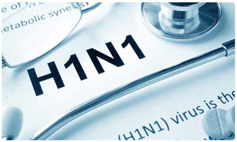 H1N1 Virus, H1N1 Virus: ఆ ఇద్దరికీ వైరస్.. మూతబడ్డ ఆఫీసులు..!