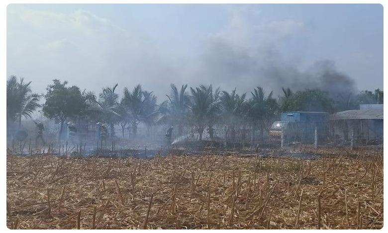Blaze in Virudhunagar firework factory: Seven dead.. nine injured, తమిళనాడులో భారీ పేలుడు.. ఏడుగురు మృతి