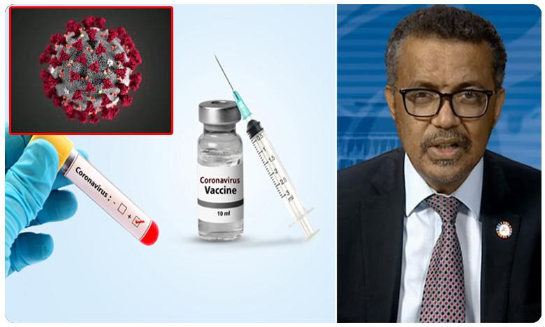 No Vaccine for Coronavirus WHO clarity, ఫ్లాష్న్యూస్: కరోనాకు మందు లేదు.. 18 నెలలు ఆగాల్సిందే: WHO క్లారిటీ