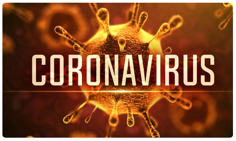 Coronavirus Outbreak, కరోనాకు విరుగుడు.. వ్యాక్సిన్ తయారు చేస్తోన్న హైదరాబాద్ కంపెనీ..