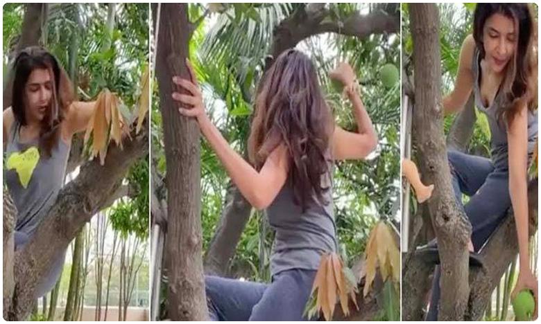 Manchu Lakshmi climbs Mango tree for her daughter Nirvana Video Goes Viral, మామిడి చెట్టు ఎక్కిన మంచువారమ్మాయి