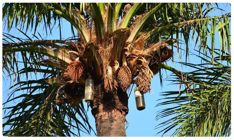 Palm Wine, ఆన్లైన్లో కల్లు విక్రయాలు.. ఒక్క కాల్ చేస్తే చాలు..