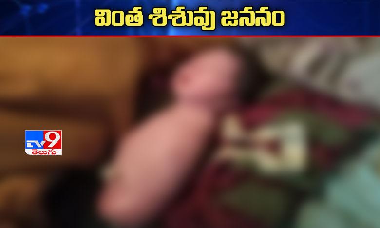 woman in madhya pradesh gives birth to baby without arms legs doctors baffled, అరుదైన ఘటన: కాళ్లు, చేతులు లేకుండానే బిడ్డ జననం