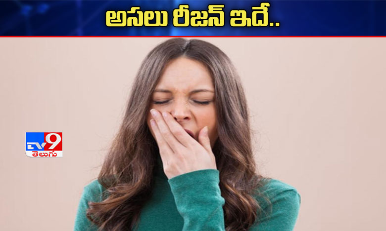 Why do we yawn and why is it contagious? Here are the details, ఆవిలింత రావడానికి అసలు కారణం..'ఆక్సిజన్' అందకపోవడమేనట!