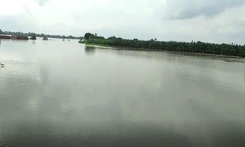 heavy flood water into prakasam barrage lanka villages crop loss officials alert, ప్రకాశంబ్యారేజి లంక గ్రామాల్లోకి నీళ్లు.. అధికారుల అలర్ట్