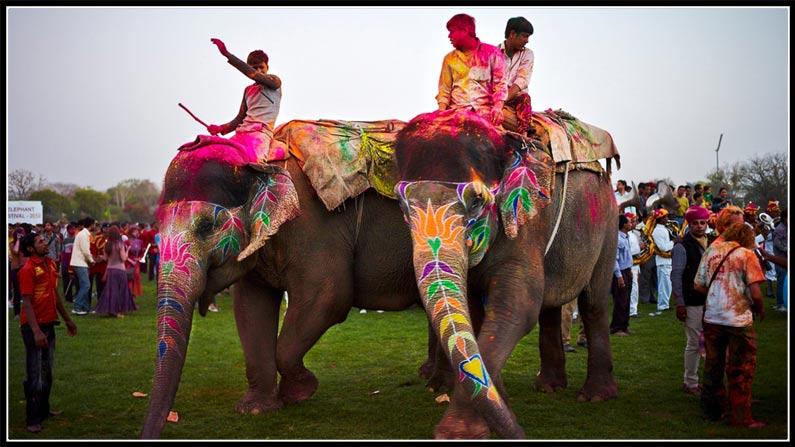 Holi Festival Holi Celebrations In Nizamabad Fun Fight (6)